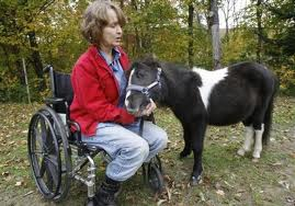 Adult with miniature horse